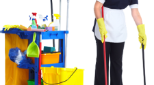 професионални чистачи